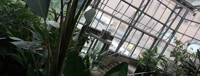 Cloud Forest Conservatory is one of Ku.