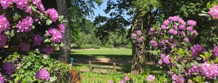 Fischers Park is one of Best sport places in Hamburg.