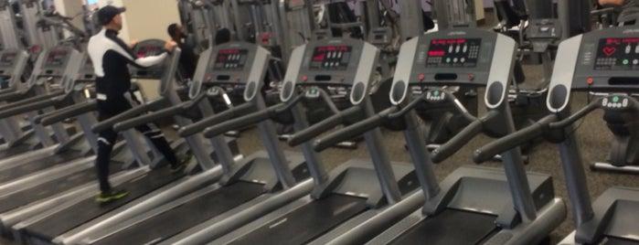LA Fitness is one of Brad'ın Beğendiği Mekanlar.