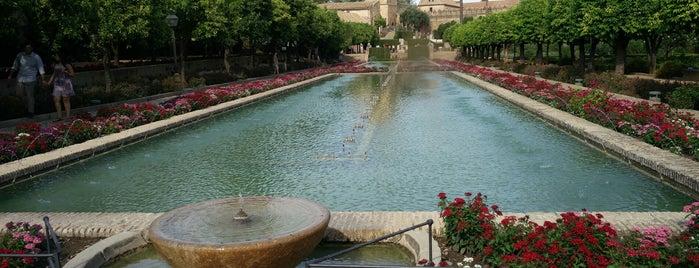 Jardines del Alcazar is one of Locais curtidos por Fedor.