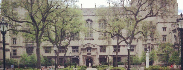 Universidade de Chicago is one of Chicago to see.