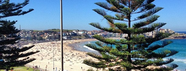 Bondi Social Restaurant and Bar is one of Sydney.
