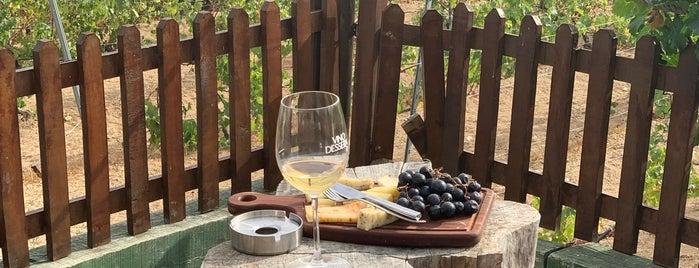 Vino Dessera Vineyards is one of Huseyin: сохраненные места.