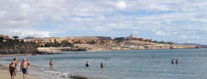Playa Costa Calma is one of Fuerteventura.