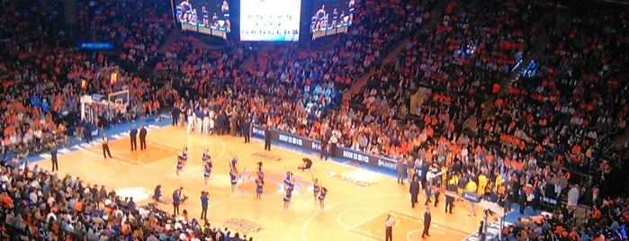 Madison Square Garden is one of TODO New York City.