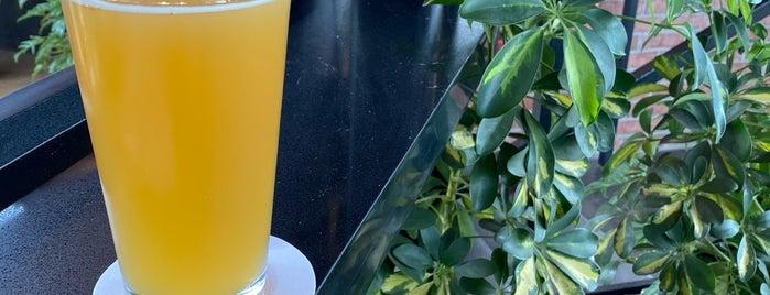 Mid City Beer Garden is one of Baton Rouge Restaurants.
