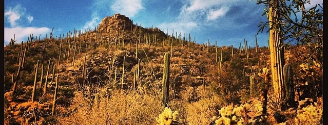 Ventana Canyon View is one of Tucson.