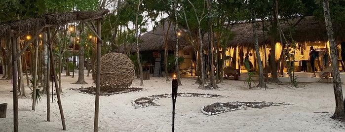 Papaya Playa Beach Club is one of Tulum Mex.