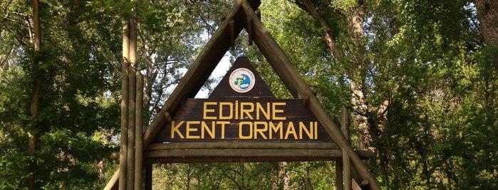 Edirne Kent Ormanı is one of Yeme-İçme (Türkiye).