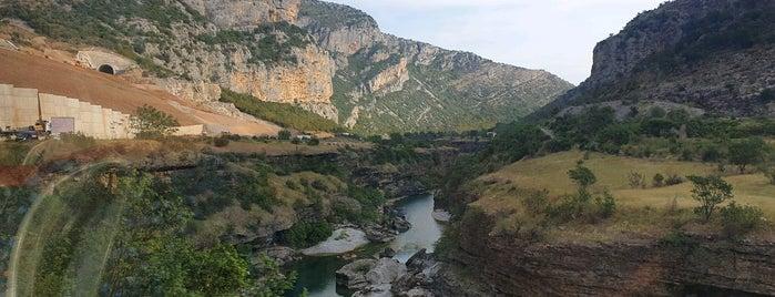 Montenegro is one of Locais curtidos por Erkan.