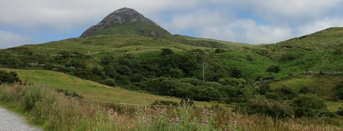 Connemara National Park is one of Mark's list of Ireland.