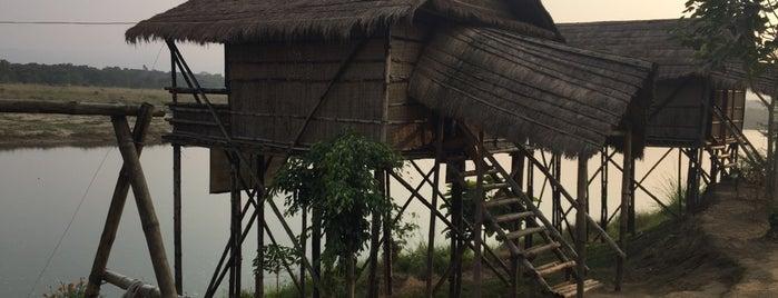 Jungle Safari Lodge is one of Nepal.