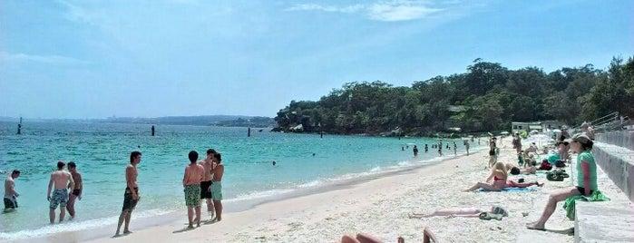 Shark Bay is one of Sitios Internacionales.