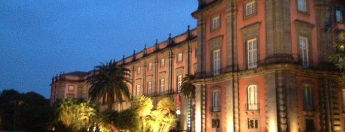 Museo di Capodimonte is one of Napoli & Positano.