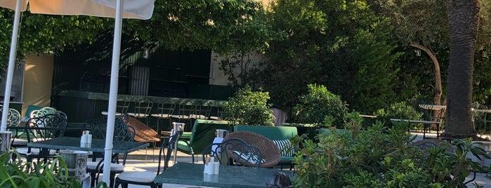 Palms On the Verandah is one of Buddymoon: Greece.