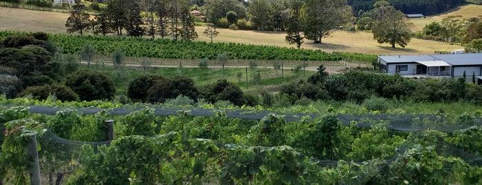 Tantalus Estate Vineyard is one of Locais curtidos por Ricardo.