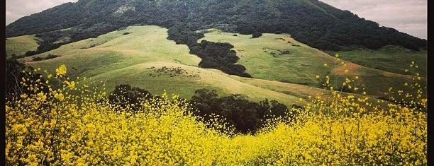 Bishop Peak is one of San Luis Obispo Guide.
