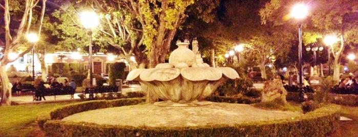 Jardin de Tequisquiapan is one of Lugares guardados de Enrique.