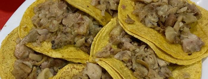 Tacos Rigo is one of Lieux qui ont plu à Joaquin.