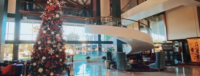 Hard Rock Hotel is one of Orte, die Fernando gefallen.