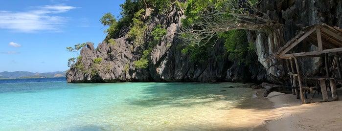 Vivian Beach is one of Filipinler-Manila ve Palawan Gezilecek Yerler.