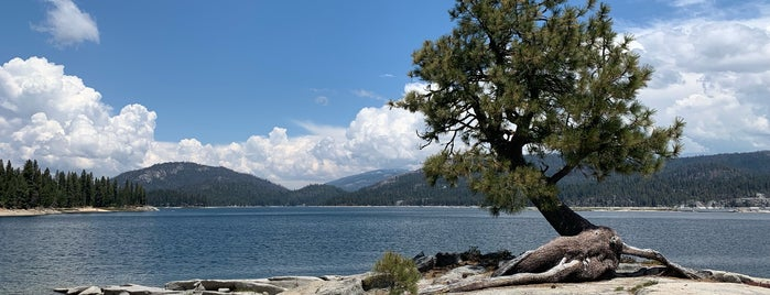 Shaver Lake is one of Lugares favoritos de Dominic.