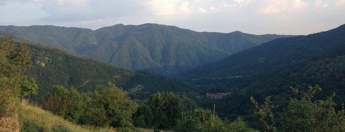 Montagna Verde Agriturismo is one of Posti che sono piaciuti a Sara.