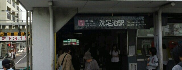Senzoku-ike Station (IK07) is one of Lieux qui ont plu à 西院.