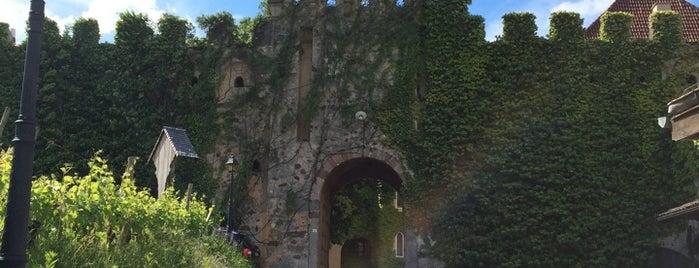 Castello Rametz is one of Orte, die Veronika gefallen.