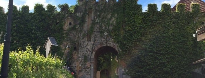 Castello Rametz is one of Posti che sono piaciuti a Veronika.