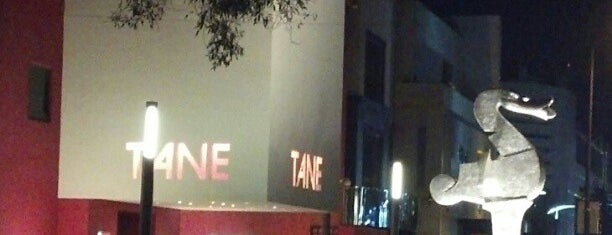 Tane is one of Mexico City.
