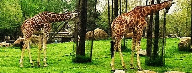 Bursa Hayvanat Bahçesi is one of ** TRAVELLERS ' 2 **.