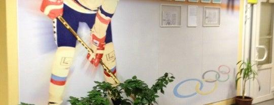Хоккейный Клуб Николая Дроздецкого is one of Екатерина 님이 좋아한 장소.