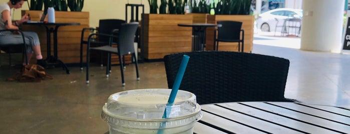 Buddy Brew Coffee is one of Florida Gems.