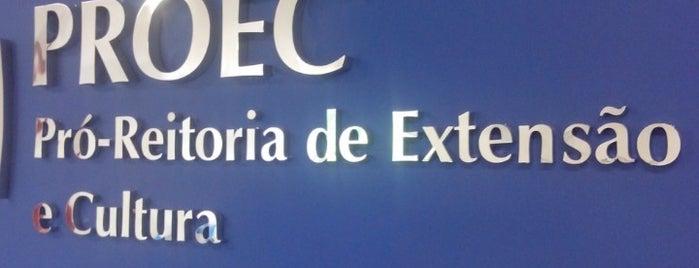 UPE - Pró Reitoria de Extensão e Cultura is one of TIMBETALAB.
