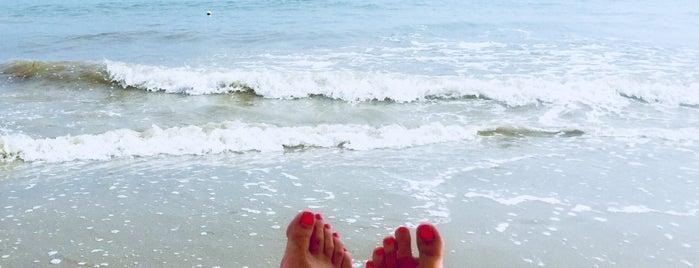 Bagno Eden is one of Beach.