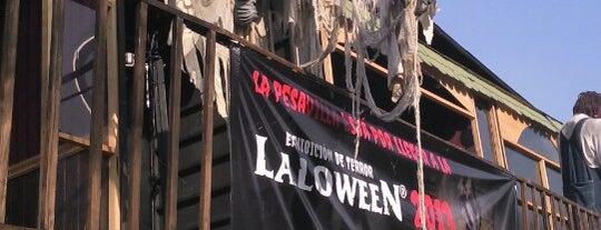 Laloween Oficial is one of Lo tengo que visitar!.