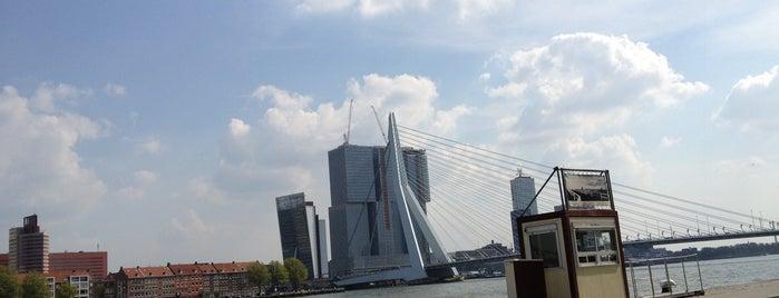 Boompjeskade is one of Rotterdam.
