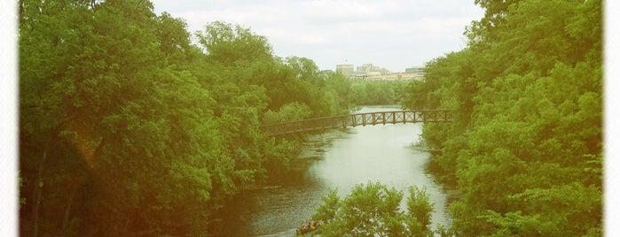 Zilker Park is one of Austin.