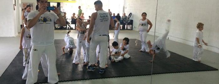 Capoeira Nago Miami is one of Lugares favoritos de Patty.
