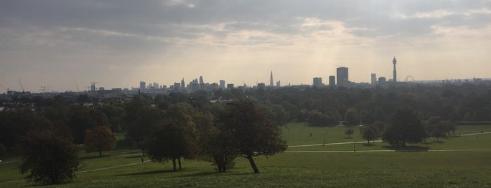 Primrose Hill is one of London Loves.