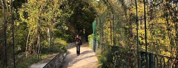 Jardins du Rosaire is one of Denis 님이 좋아한 장소.