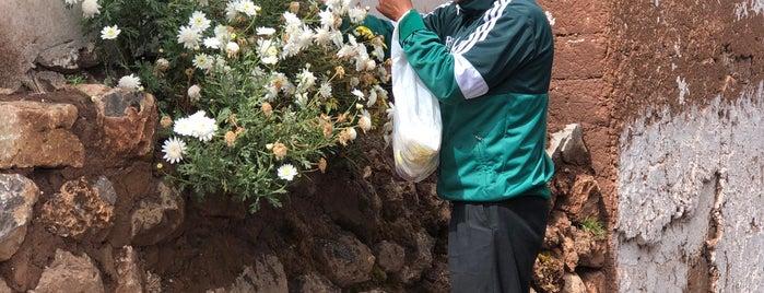 Chinchero is one of Cusco y Matchu Pitchu.