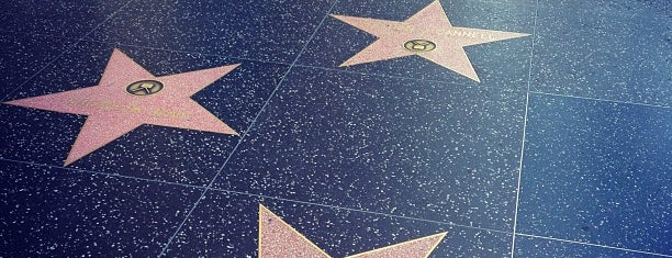 Hollywood Walk of Fame is one of Going Back To Cali...Again.
