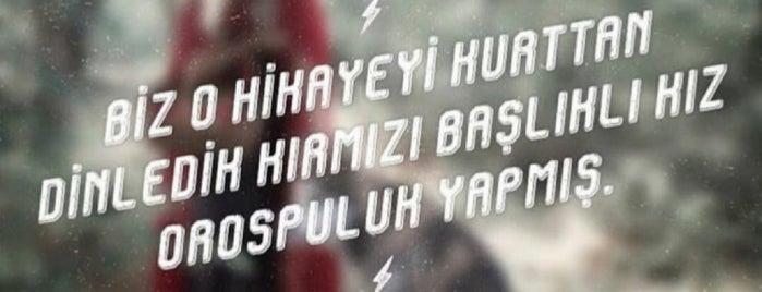 Taşbaşı is one of Altınordu.