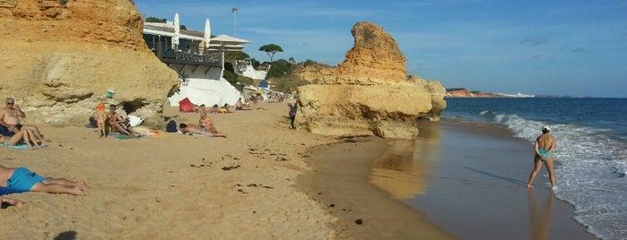 Praia de Olhos d'Agua is one of Tempat yang Disukai MENU.