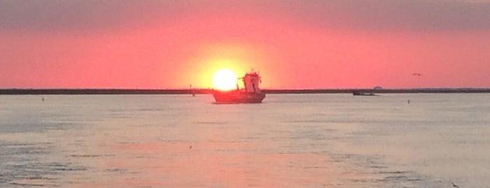 Gulf Of Mexico is one of Posti che sono piaciuti a Rita.