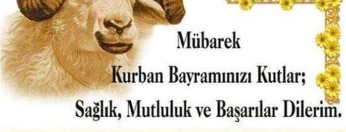 Tınaztepe is one of Yasemin Arzu'nun Kaydettiği Mekanlar.