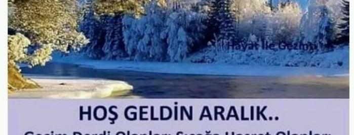 Türkiye Petrolleri is one of Lieux qui ont plu à Ekrem.