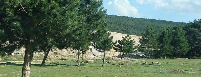yılantaş-frig vadisi is one of Orte, die Yalçın gefallen.